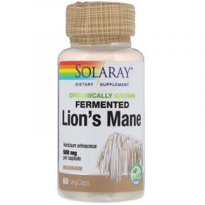 Ежовик гребенчатый, Lion's Mane, Solaray, органик, 500 мг, 60 вегетарианских капсул
