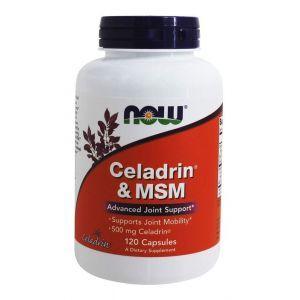 Целадрин и МСМ, Celadrin & MSM, Now Foods, 500 мг, 120 к